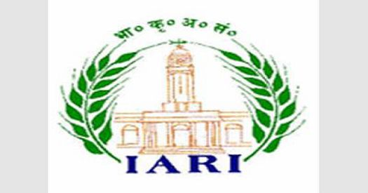 IARI Latest Recruitment
